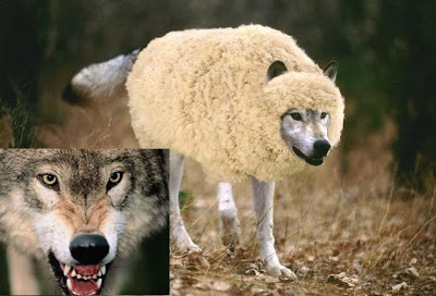 Savage Wolves – Part 1