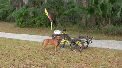 Personal Update – Champ and the Catrike