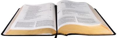 The Heart of David Bible